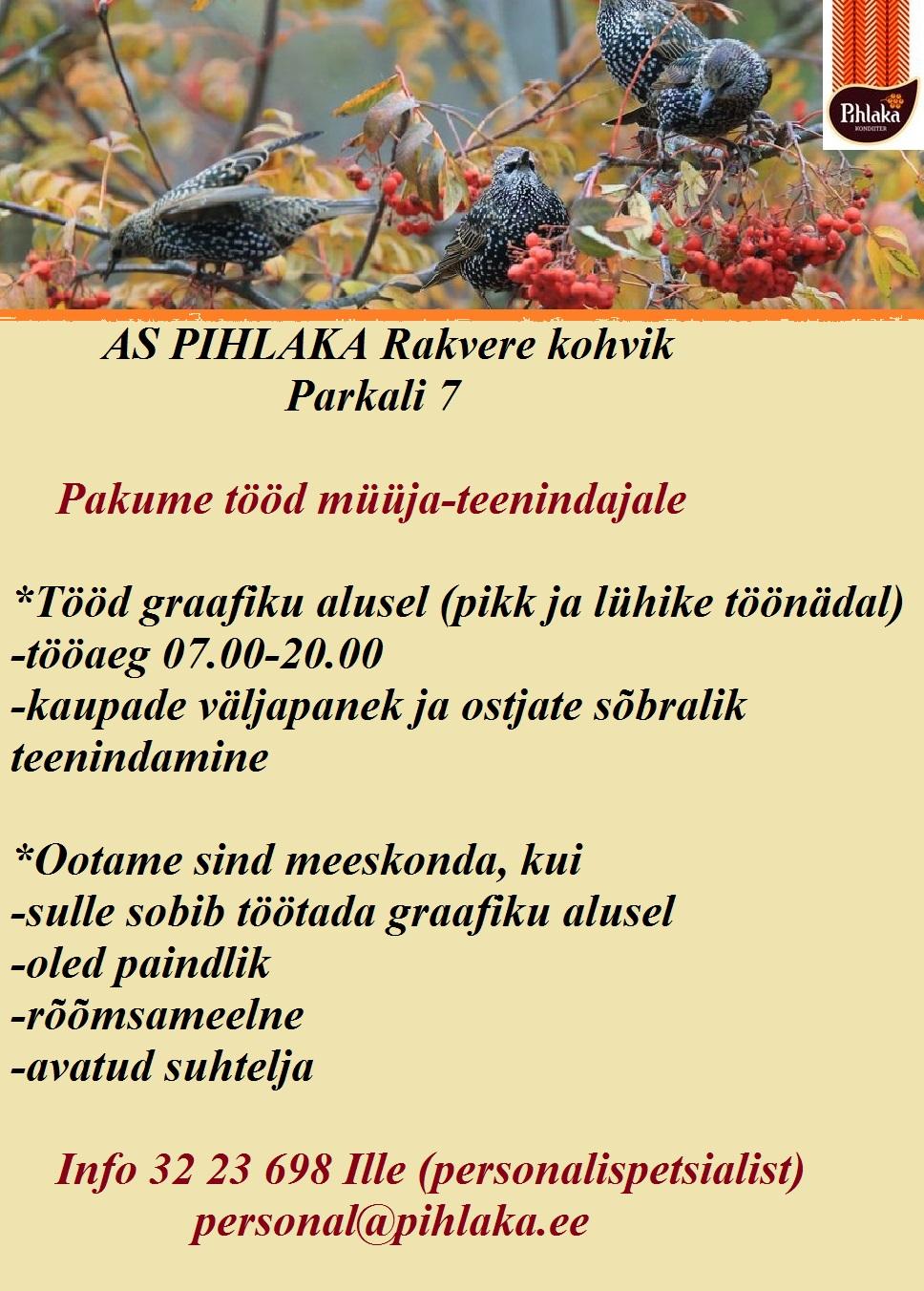 rakvere-parkali-7